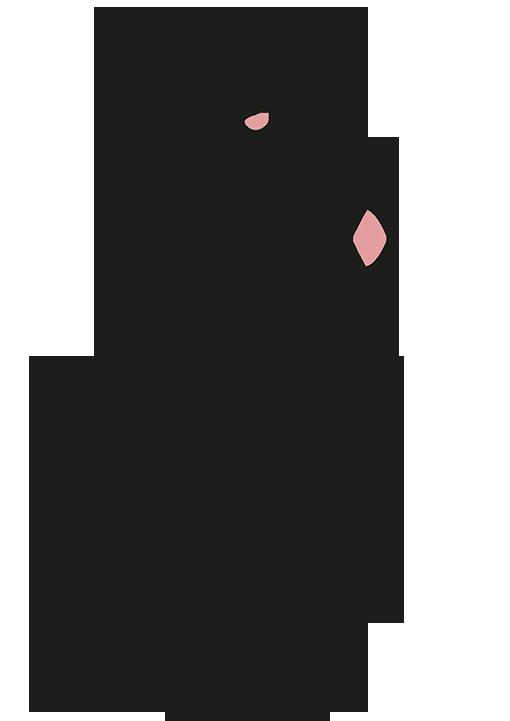 Chirurgie des lésions cutanées - Dr La Marca chirurgien plasticien clinique du val d'Ouest à Ecully et clinique du Renaison à Roanne